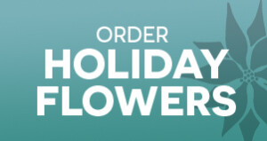 holiday-flowers